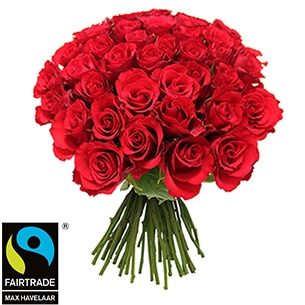 Bouquet de roses Brassée de roses rouges + 10 roses offertes Max Havelaar Amour