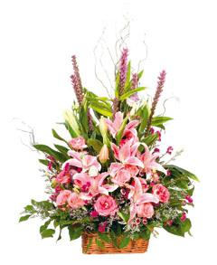 Bouquet de fleurs Arrangement of Cut Flowers