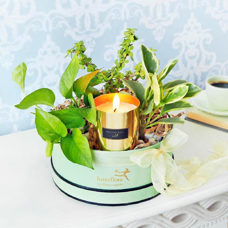 Bouquet de fleurs Hues of Green