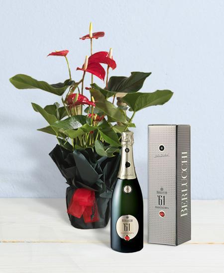 Bouquet de fleurs Berlucchi Special