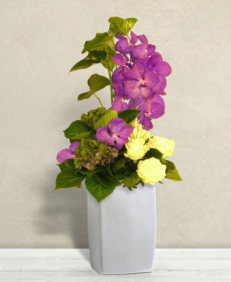Bouquet de fleurs Schubert