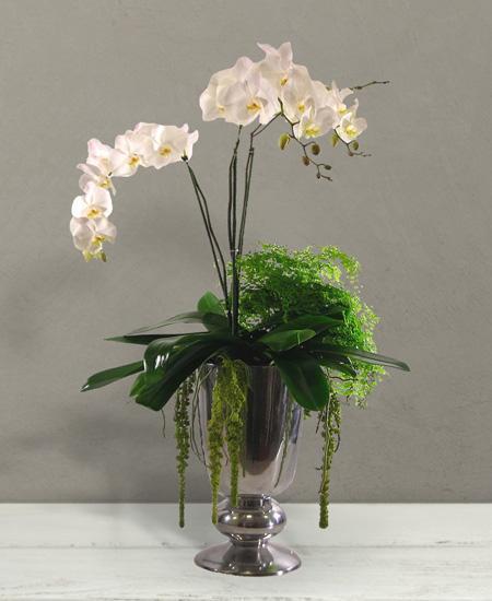 Bouquet de fleurs Rembrandt