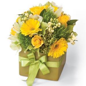 Bouquet de fleurs Lime Zest