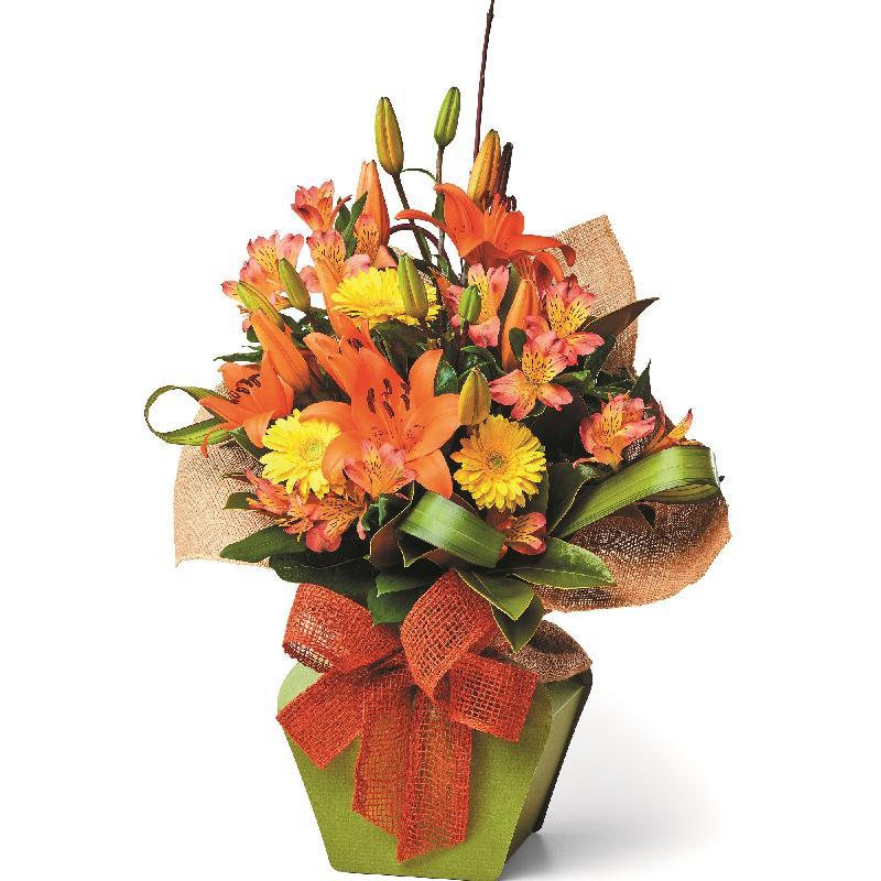 Bouquet de fleurs Eco Friendly
