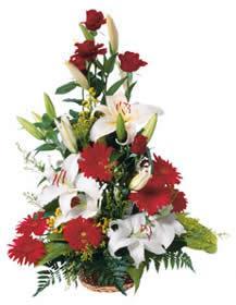 Bouquet de fleurs High Arrangement