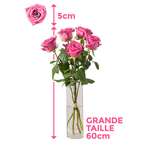 Bouquet de roses Câlin Amour