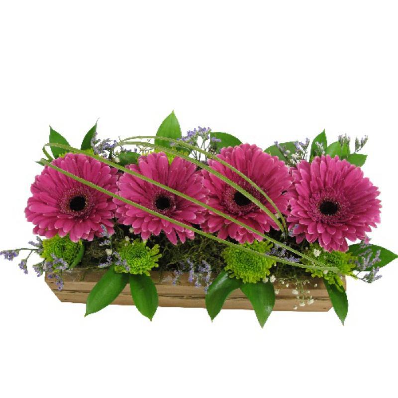 Bouquet de fleurs Gerberas in Box